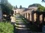 scavi-ostia-antica-viale