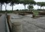 piazzale-corporazioni-ostia-antica