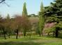 flora-villa-borghese